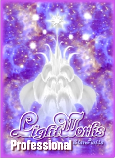 LightWorks Professional Edition by Silvia Hartmann