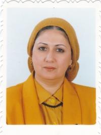 Zeinab AbdelAziz Alloub